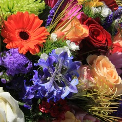 Deal of the Day Arrangement from In Full Bloom in Farmingdale, NY