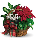 Holiday Homecoming Basket from In Full Bloom in Farmingdale, NY