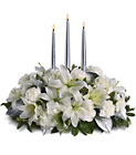 Silver Elegance Centerpiece from In Full Bloom in Farmingdale, NY