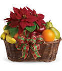Fruit and Poinsettia Basket from In Full Bloom in Farmingdale, NY