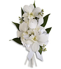 Graceful Orchids Corsage from In Full Bloom in Farmingdale, NY