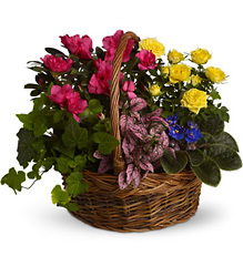 Blooming Garden Basket from In Full Bloom in Farmingdale, NY