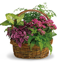 Secret Garden Basket from In Full Bloom in Farmingdale, NY
