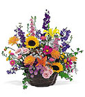Summertime Sensation Basket from In Full Bloom in Farmingdale, NY